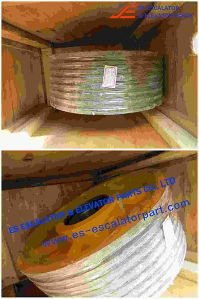 ESThyssenkrupp Rope Pulley Assy 200163379